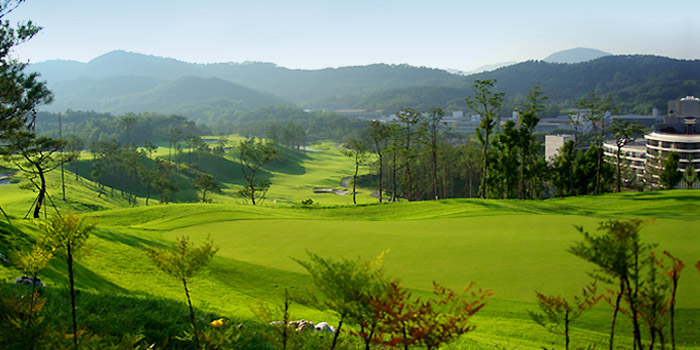 buyeo country club 1